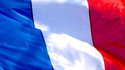Le Francais au Pluriel