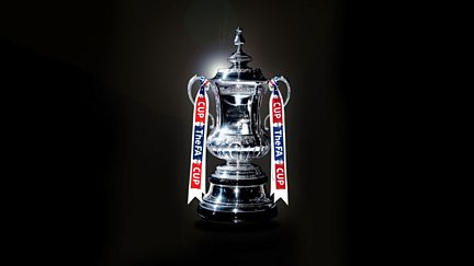 Third Round: Cardiff City v Fulham