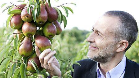 1. Pears and Garlic