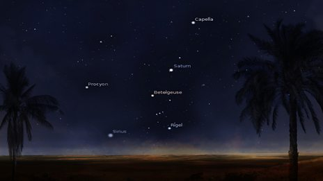 What the stars looked like: Explore the images