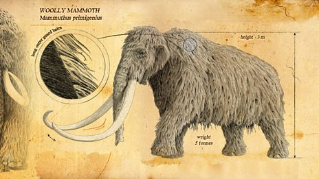 In pictures: The ice age giants