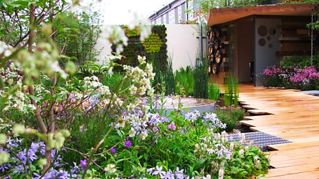 In Pictures: The RHS Chelsea Flower Show 2013