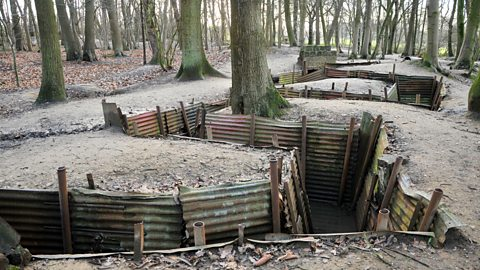Image for World War 1 trenches in a back garden