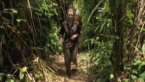 Image for Stacey Dooley travels through the Peruvian jungle in search of a cocaine lab