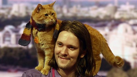 Image for James Bowen and his cat Bob