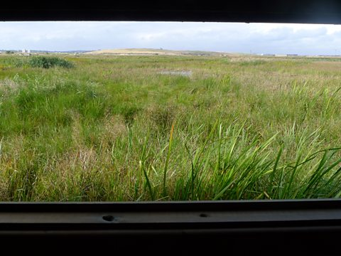 View across Rainham Marshes from one of the hides