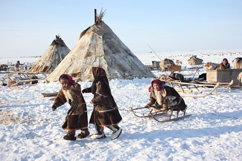 The reindeer herders live in conical tents called 'chums'