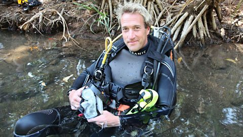 Ben Fogle Swimming with Crocodiles
