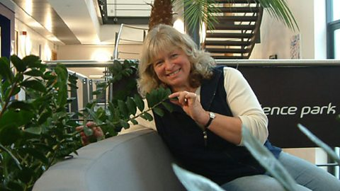 Anne Swithinbank examines the office plants at the Tamar Science Park, Plymouth