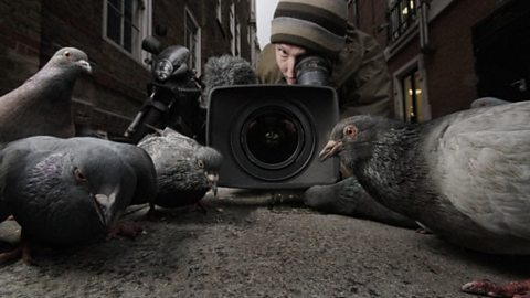 Cameraman Simon De Glanville shooting pigeons in Soho