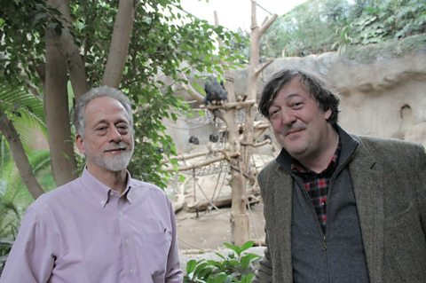 Stephen Fry with Professor Michael Tomasello