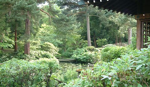 The stunning Japanese gardens at Tatton Park