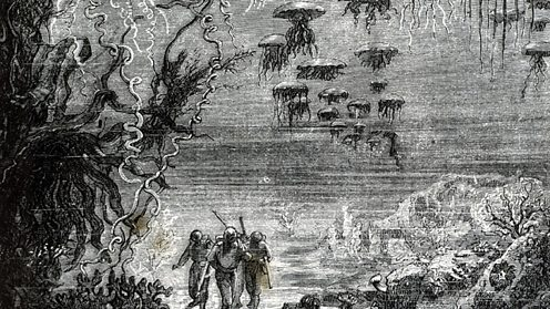 Detail of illustration from 20,000 Leagues under the Sea