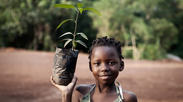 African girl planting