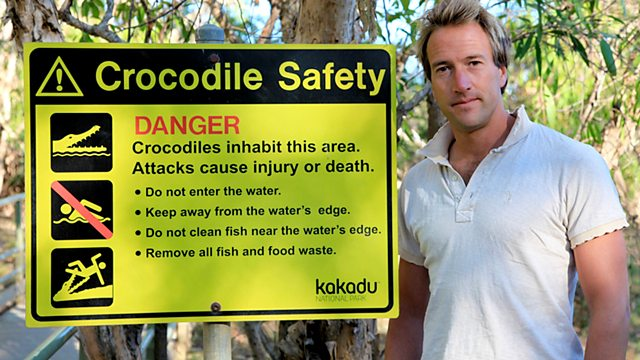 Image for Swimming with Crocodiles