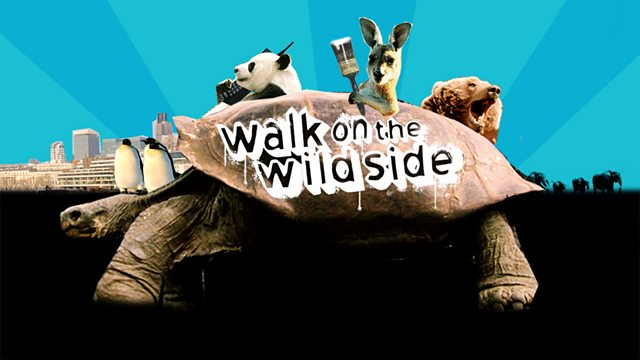 Image for Walk on the Wild Side