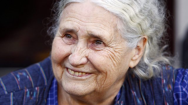 Image for Doris Lessing