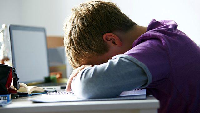 BBC Learning English - The English We Speak / Cyberbullying