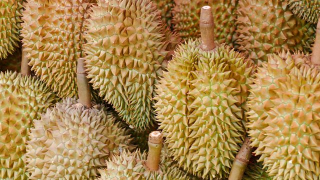 Perkara yang korang kena tahu sebelum melantak durian!