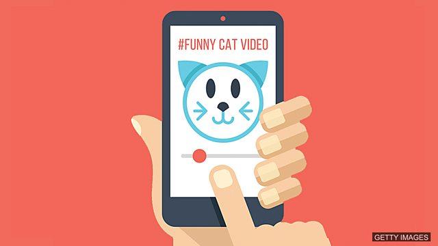 Learning english cartoon video