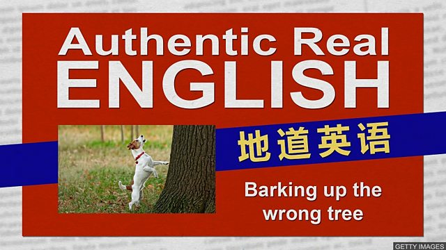 BBC Learning English - 地道英语/ Barking up the wrong tree