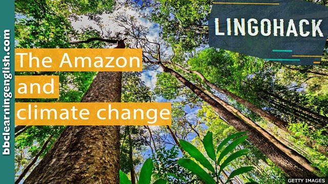 BBC Learning English - Lingohack / The Amazon and climate change