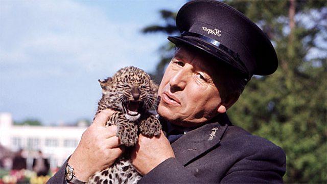 Animal Magic (TV series)