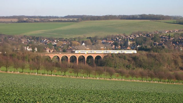 A train on a bridge in the countryside