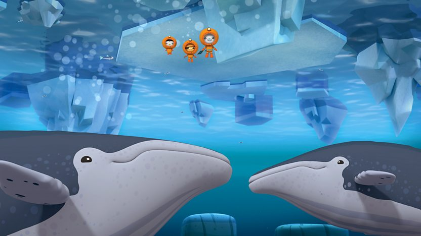 Octonauts: Series 3: 5. Humpback Whales on BBC iPlayer