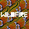Cover art for Wildfire (feat. Little Dragon)