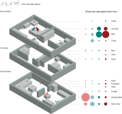 Graphic showing where four house cats spent their time