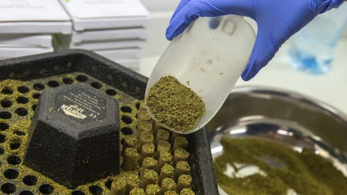 Medicinal cannabis lab