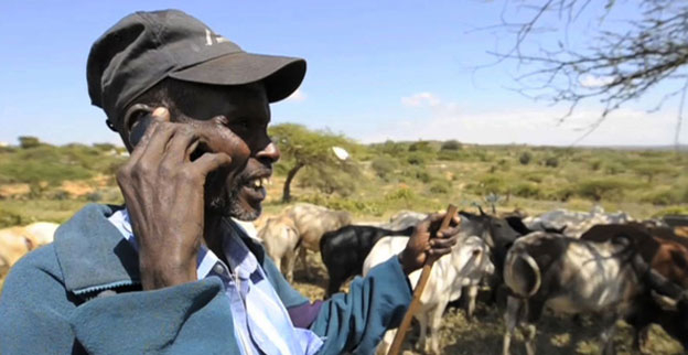 A man uses his mobile while out looking after his cattle in Africa.