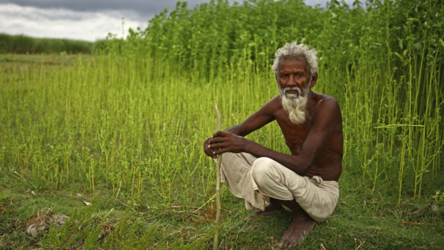 A farmer in Bangladesh (Panos Picture)