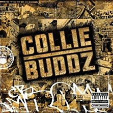 Review of Collie Buddz
