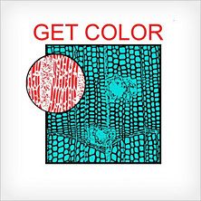 Review of Get Color