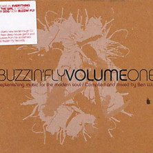 Review of Buzzin' Fly, Volume 1 (Mixed by Ben Watt)