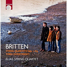 Review of String Quartets 2 and 3 / Three Divertimenti (Elias String Quartet)