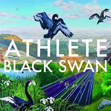 Review of Black Swan
