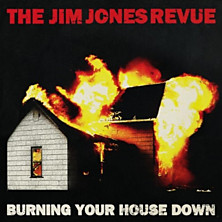Review of Burning Your House Down