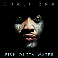 Review of Fish Outta Water