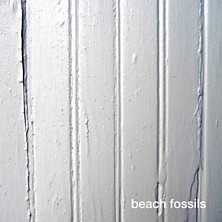 Review of Beach Fossils