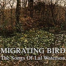Review of Migrating Bird