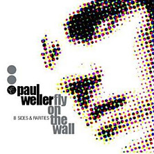 Review of Fly On The Wall