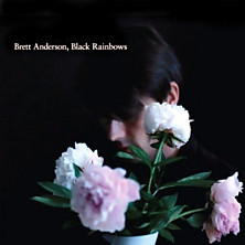 Review of Black Rainbows