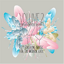 Review of Buzzin Fly Volume 2