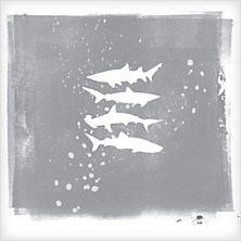 Review of Shark Remixes