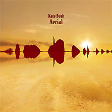 Review of Aerial