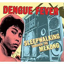 Review of Sleepwalking Through the Mekong