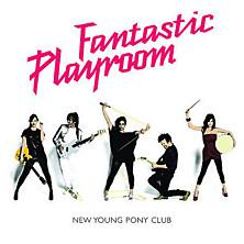 Review of Fantastic Playroom